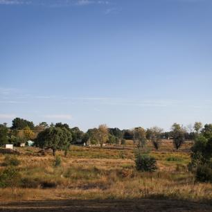 Beechworth Cabins 6